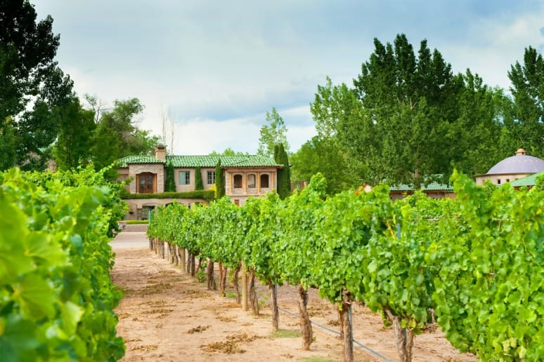 Touring and Tasting in an Unexpected American Wine Region: New Mexico