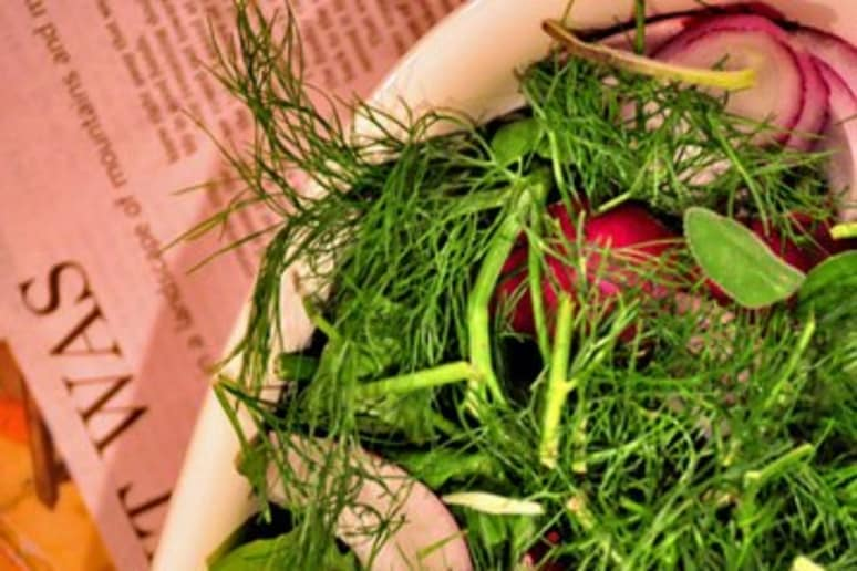 Fennel Salad with Thyme Vinaigrette