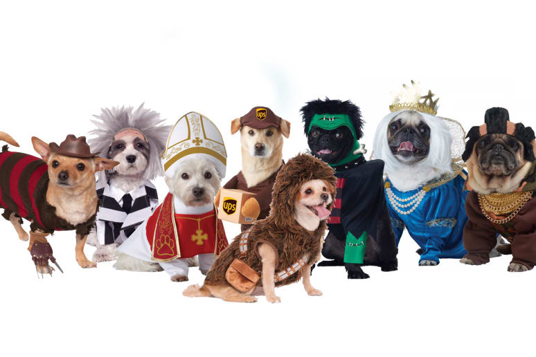 Hilarious (and Humane) Halloween Costumes for Your Pets