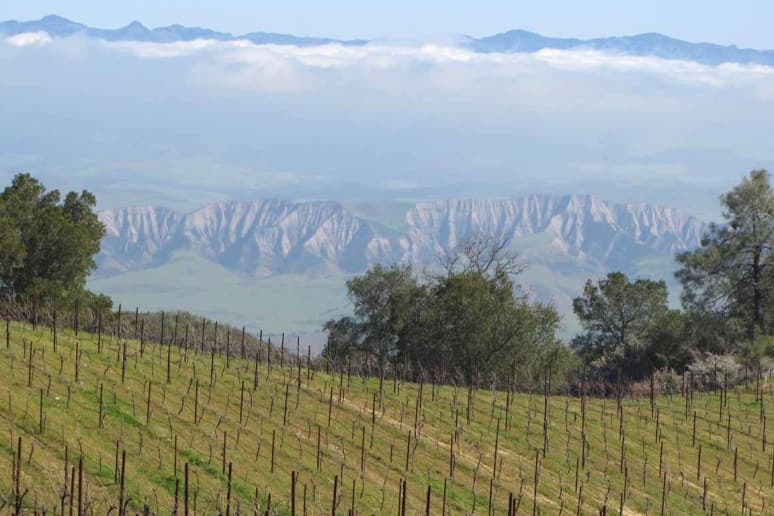 12. Calera Wine, Hollister, Calif.