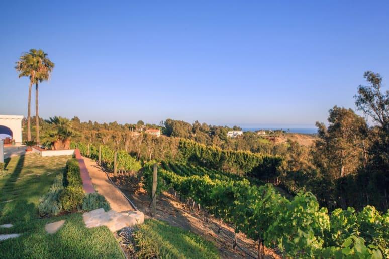 80. Dolin Malibu Estate Vineyards, Malibu, Calif.