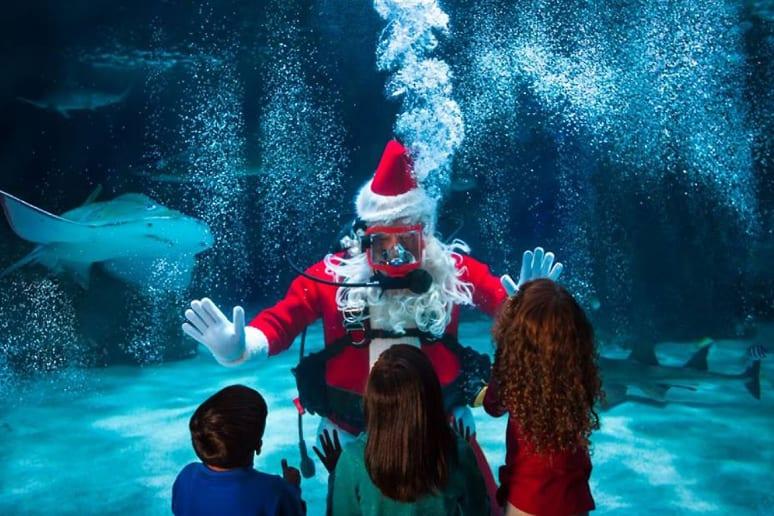 Newport Aquarium (Newport, Ky.)