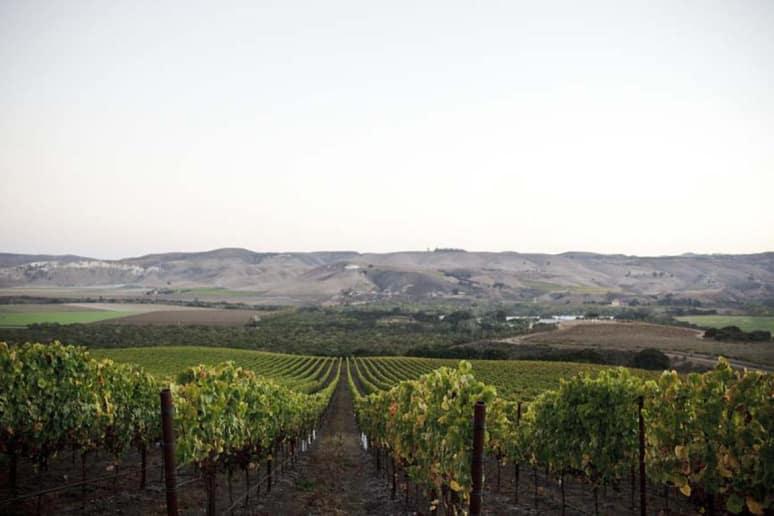 47. Sandhi Wines, Santa Barbara, Calif.