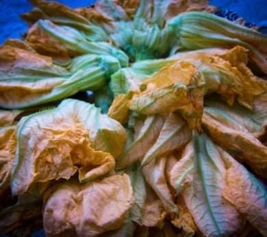 Fried Squash Blossoms