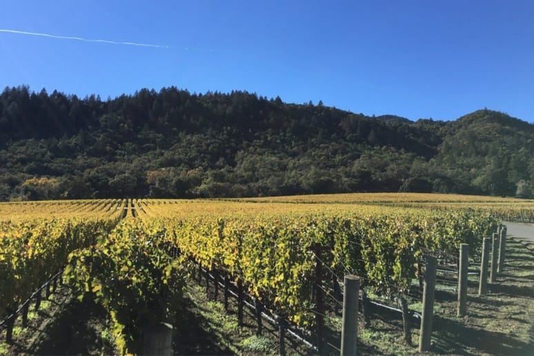 66. Staglin Family Vineyard, Rutherford, Calif.