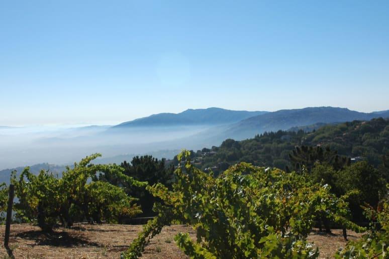 1. Ridge Vineyards, Cupertino, Calif.