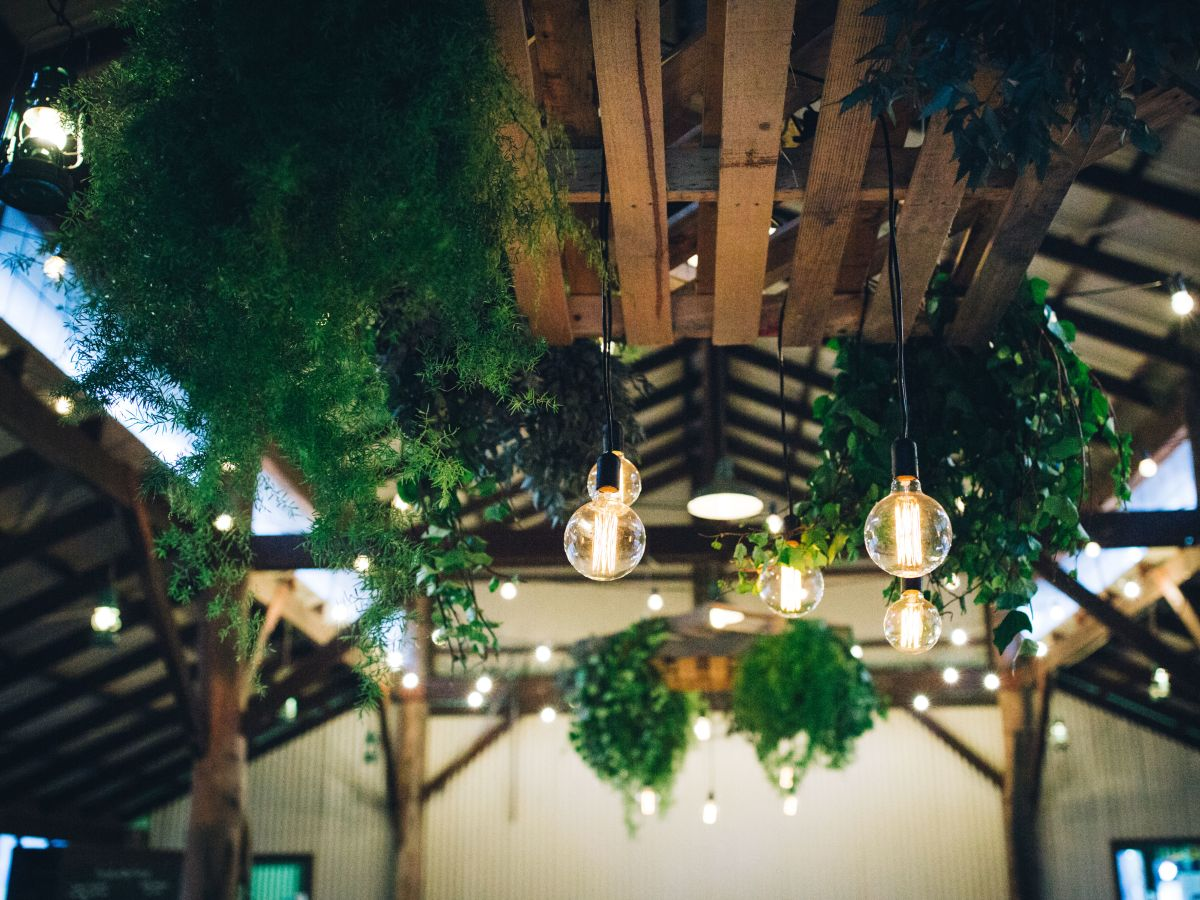 Edison Bulbs and Custom Ceiling Feature at Feast in the Forrest