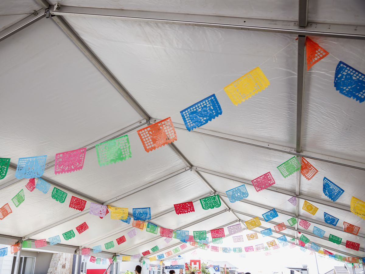 Colourful Mexican Bunting