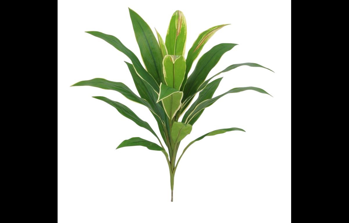 Cordyline_Leaf_Cluster_Artificial