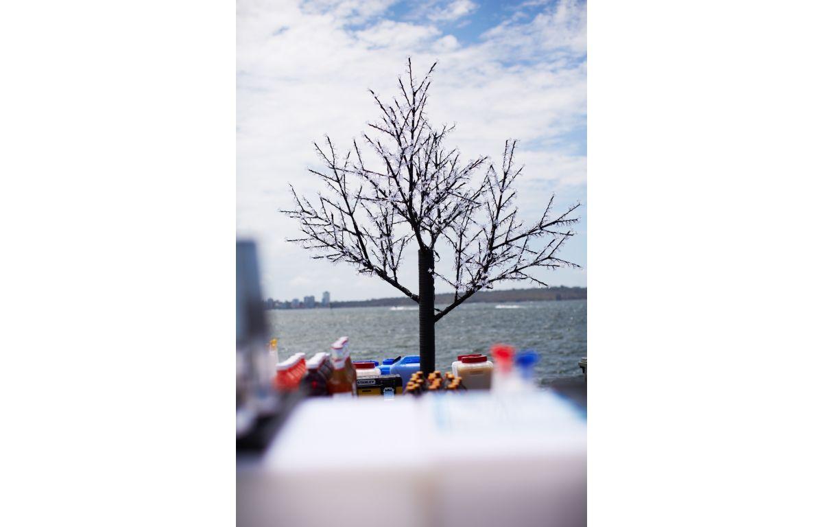 LED_Cherry_Tree
