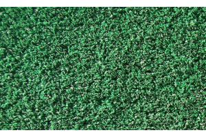 Photograph of Astro Turf