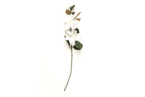 Photograph of Artificial Floral – Magnolia Stem – 70cmL