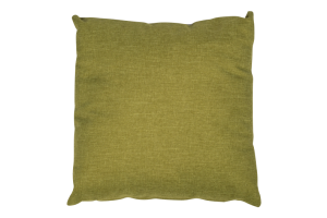 Photograph of Pea Green Cushion – 50cmSQ