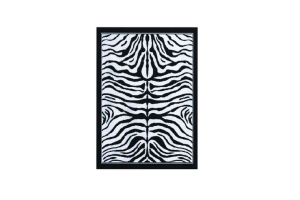 Photograph of Zebra Rug
