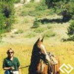 Equine Veterinary Medicine Expert Headshot