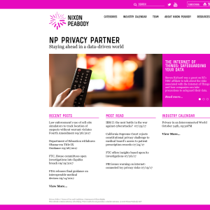 NP Privacy Partner: Staying Ahead in a Data-Driven World.