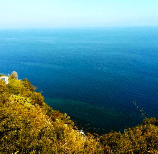 I Cavaddari. Ristorante dai profumi di mare in un borgo incantato