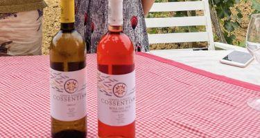 Quando il tempo premia uomini ambiziosi e i loro vini: cantina Cossentino a Partinico