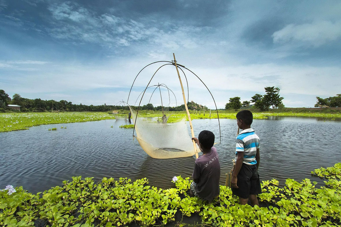 fishing assam