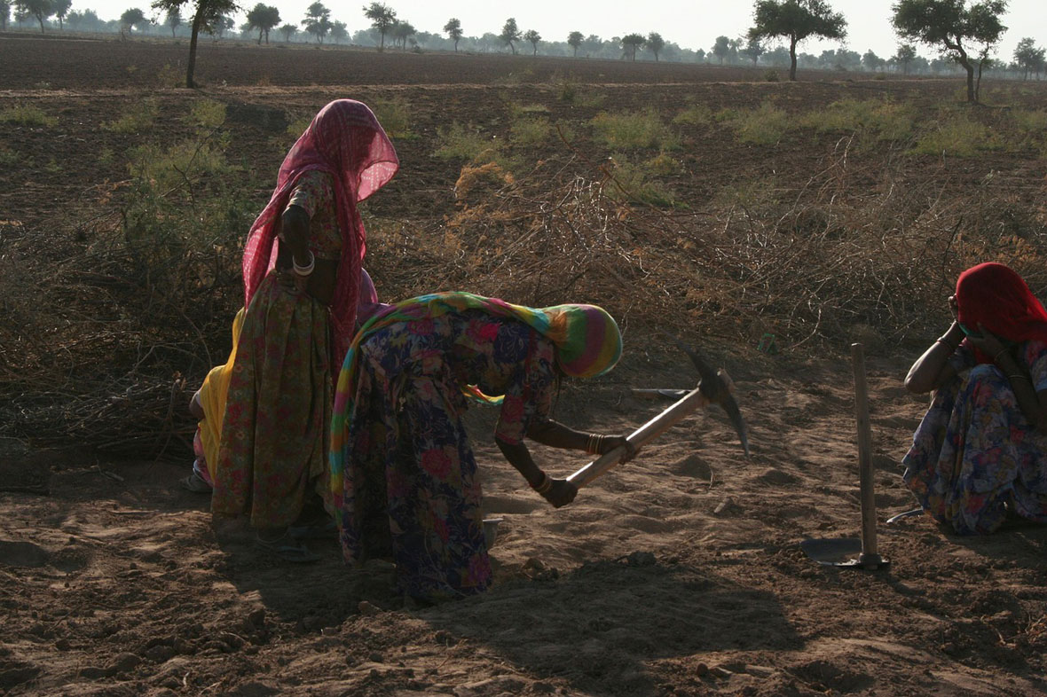 Rajasthan work in Woman