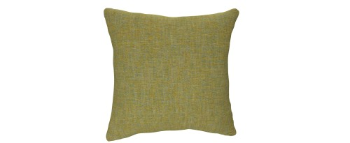 Persian Lime Cushion