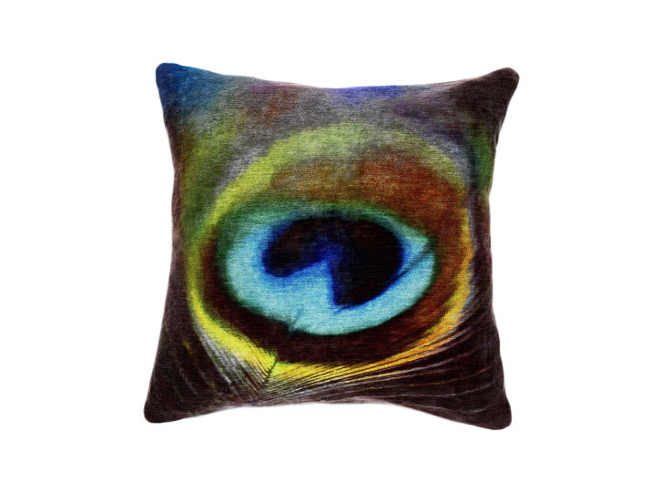 Abstract Peacock Cushion