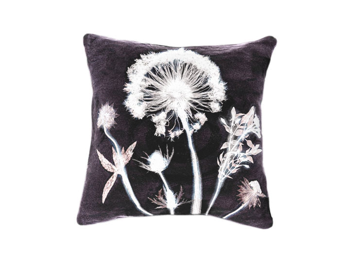 Botanical Dandelion Cushion