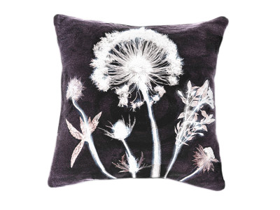 Designer Cushion, Botanical Dandelion