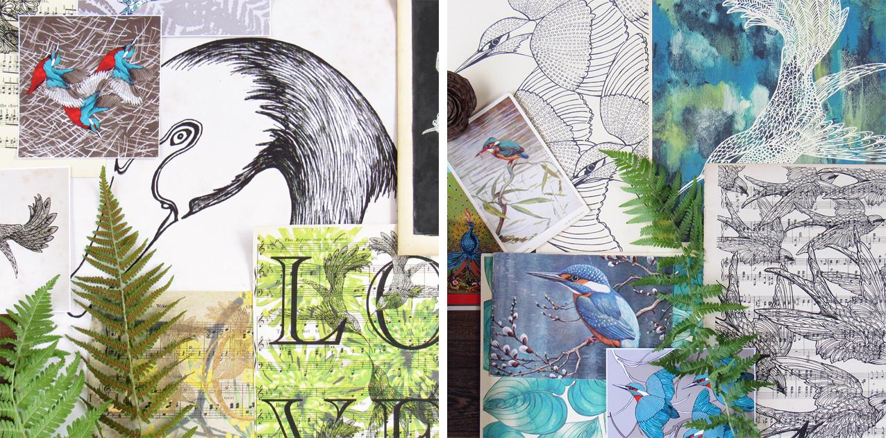 Paradise Bird Inspiration