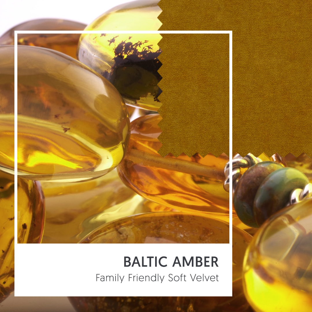 Family Friendly Soft Velvet - Baltic Amber