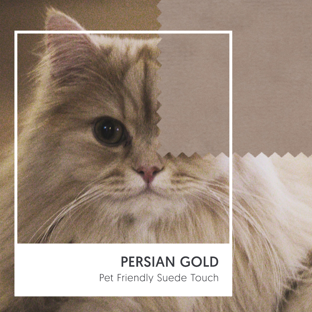 Natural Pet Friendly Fabric