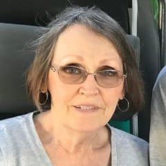 Vicki Lynn Wolfenbarger Mendisabal