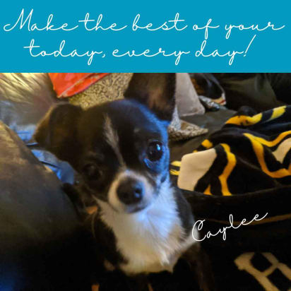 Caylee Make the best of your today every day!