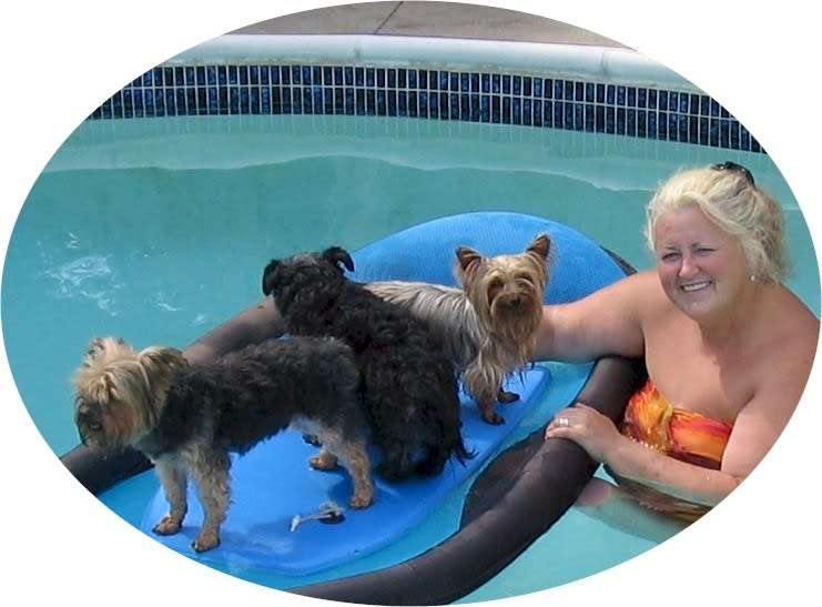 in the  pool  with the dogs