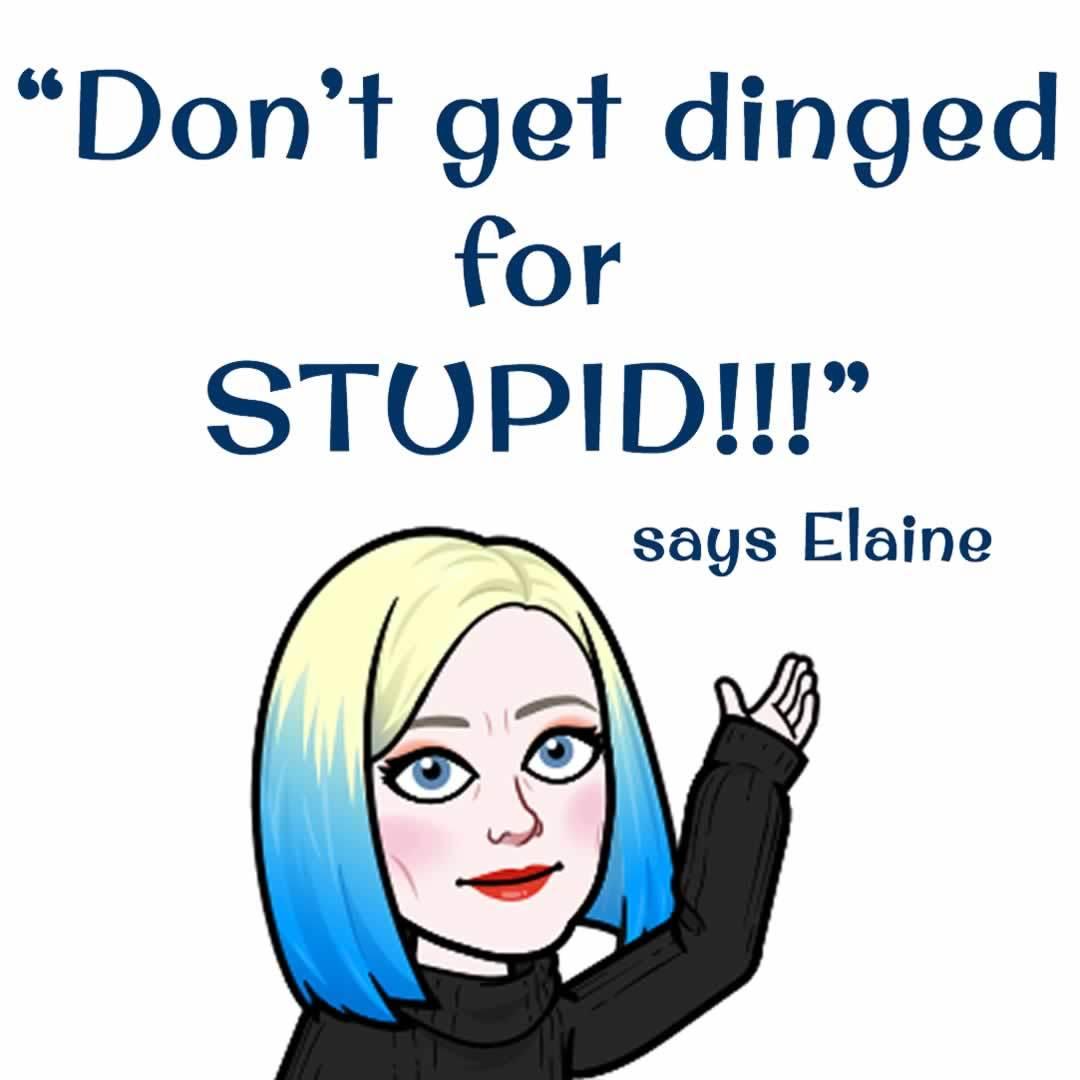 Don't get dinged for STUPID says Elaine the Glammapreneur!