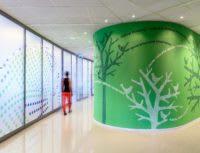 Crocs HQ interior corridor