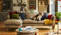 Dog sat on a sofa