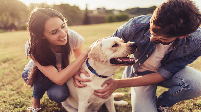 Why owning a pet makes you happier and live longer