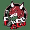 HC Bolzano-Bozen Foxes