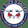 Angers Ducs