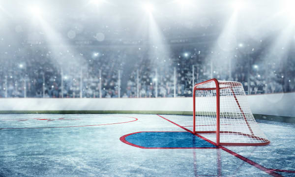 Generic ice hockey #2