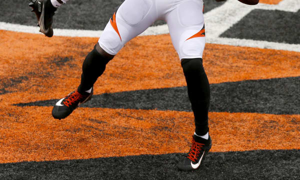 NFL: Cleveland Browns at Cincinnati Bengals