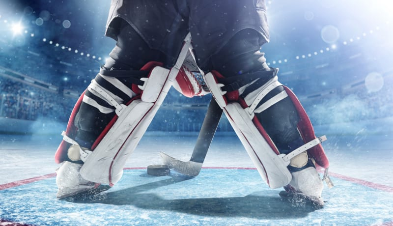 Generic ice hockey #1