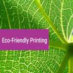 Eco friendly printing: Why We Must Embrace it