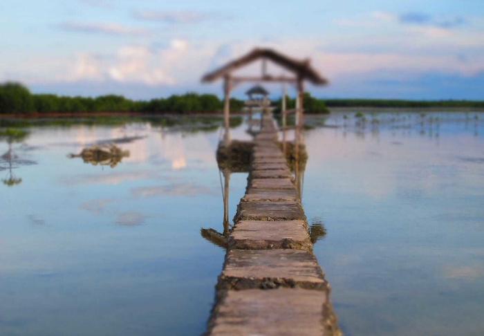 Olango Island in Olango Island, Cebu and Bohol