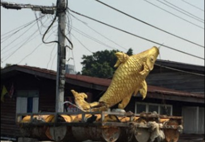 Khlongs by Boat - The Golden Fish in Khlongs by boat, Bangkok