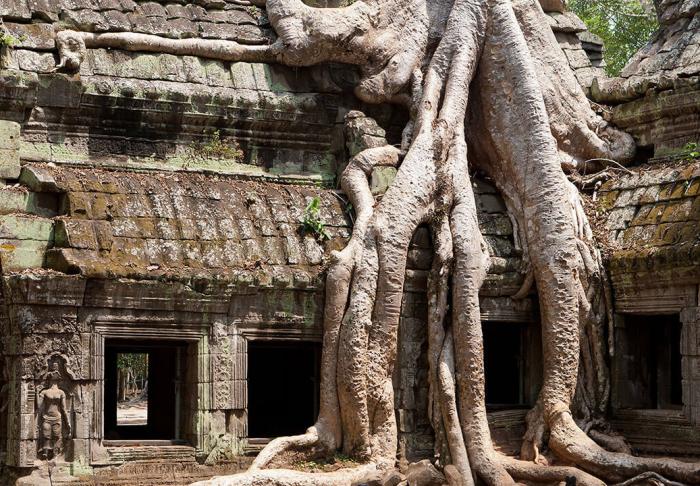 Ta Phrohm in Ta Phrohm, Siem Reap