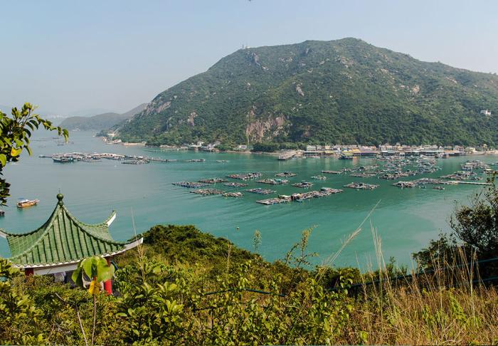 Cheng Chau & Lamma Island in Cheng Chau & Lamma Island, Hong Kong