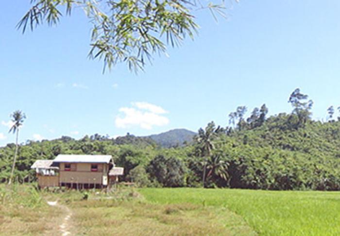 Makinit Hot Spring and Nagkalit-Kalit Falls in Makinit Hot Spring and Nagkalit-Kalit Falls, El Nido and Palawan