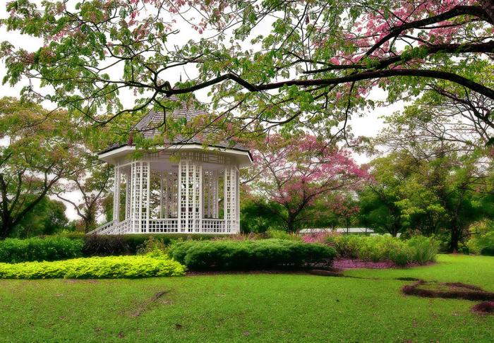 Singapore Botanic Gardens in Singapore Botanic Gardens, Singapore